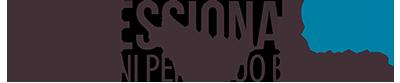 ProfessionalSite.it Retina Logo